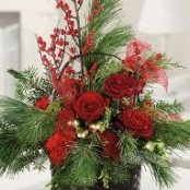 Spruce and Berry Arrangement